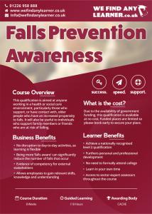 FallsPreventionAwarenesspage1_web